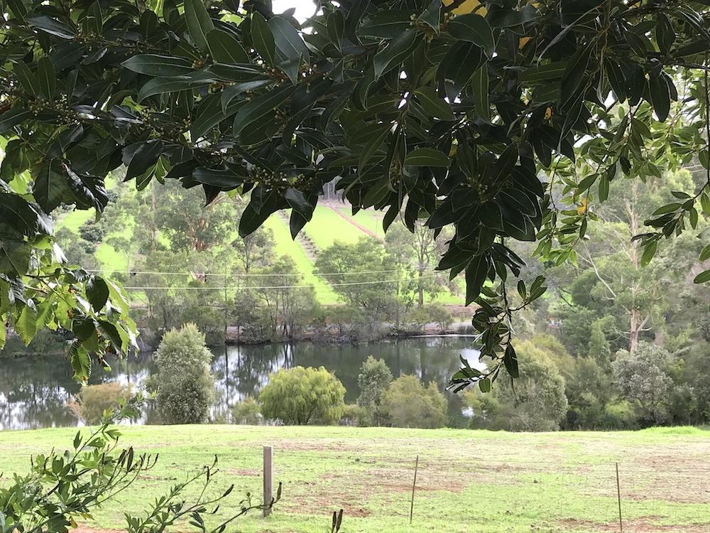 View from Hidden River Front Verranda